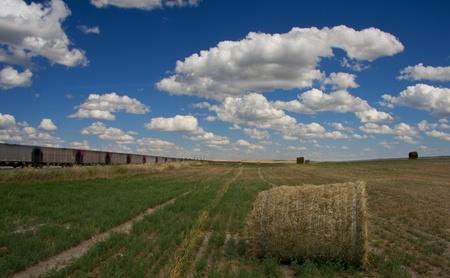 lejos: Tren y campo con heno Foto de archivo