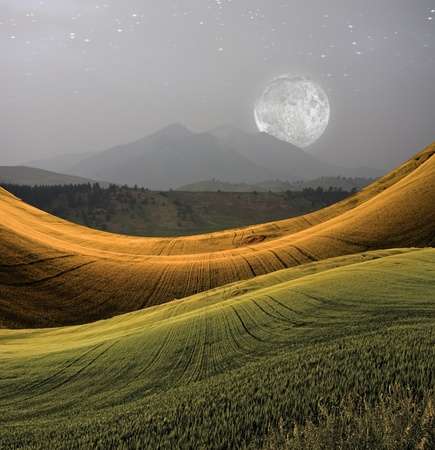 Peaceful Landscape with Mountain