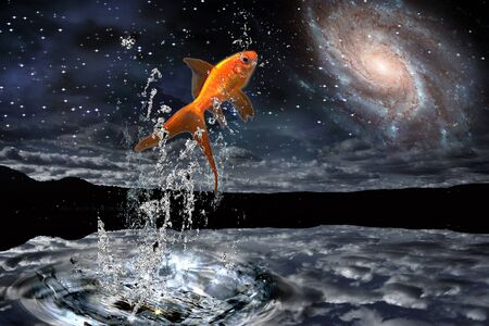 Goldfish Leaps out of Water with Night Sky photo