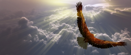 american eagle: Eagle in flight above tyhe clouds