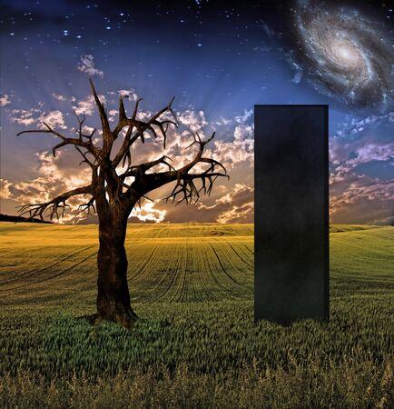 monolith: Black Monolith in Landscape