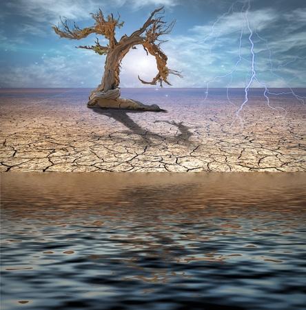 rainfall: Desert Deluge Stock Photo