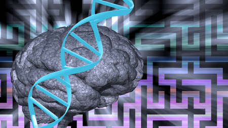 Dna abd brain puzzle photo