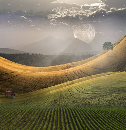 Peaceful Landscape with Mountain Stock Photo - 13109288