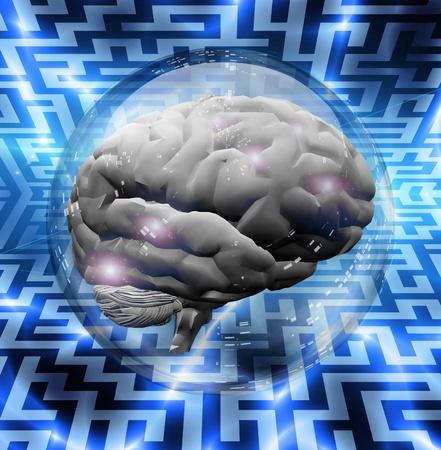 seeking an answer: Brain Puzzle