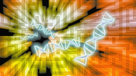 DNA Solutions photo