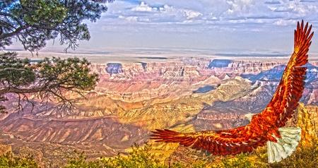 eagle canyon: Eagle takes flight over Grand Canyon USA