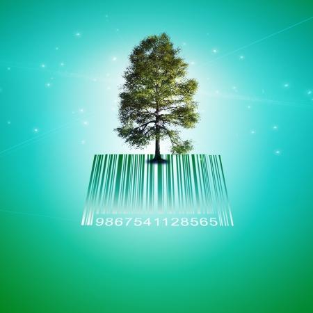 Barcode Tree Stock Photo - 13613025