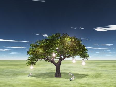 Tree of ideas photo