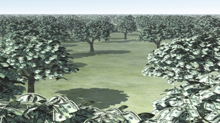 US Hundred Dollar Bill Trees