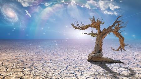 scorched: Delightful desert scene with light