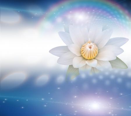 Lotus Witte