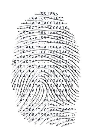 흰색에 고립 된 유전 후기 지문