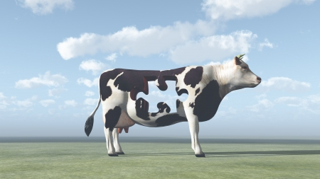 unnatural: Cow Puzzle could represent modern farming and  processing of beef and dairy products Stock Photo