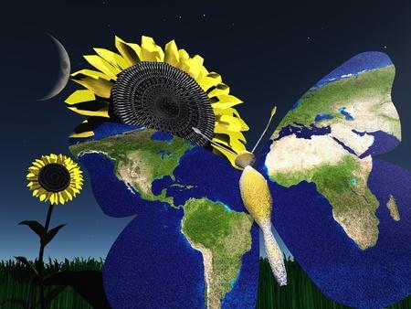 Earth Butterfly Banco de Imagens