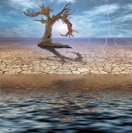 Desert Deluge photo