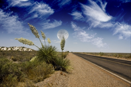 Desert Road photo
