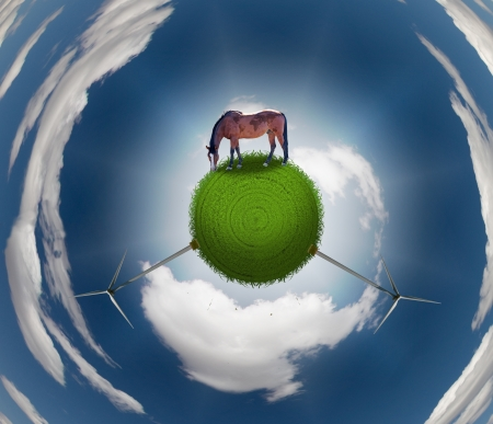 Horse on Grassy Sphere photo