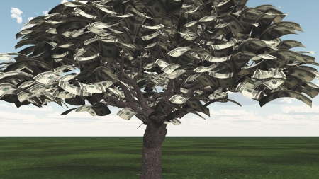 US Hundred Dollar Bill Trees photo