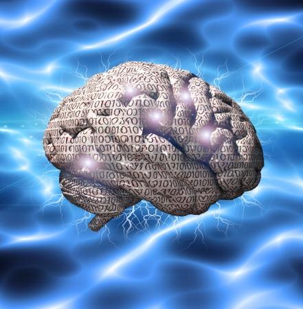 이진 뇌 스톡 콘텐츠 - 16065824