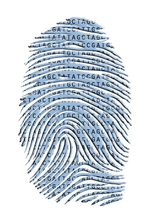 Genetic Latter Finger Print Isolated on White photo