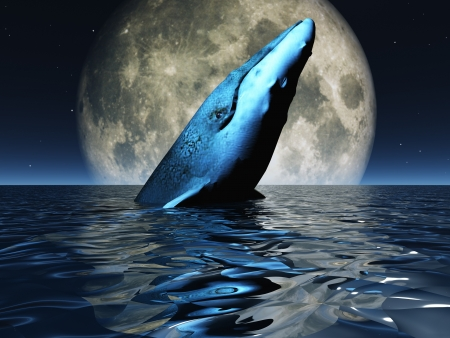 moon light: Whale on oceans surface with full moon