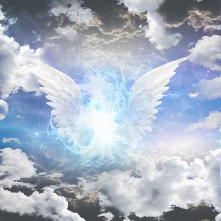 ali angelo: Essere angelico oscurato Archivio Fotografico