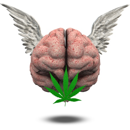 weeds: Winged Brain with Marijuana Leaf Stock Photo