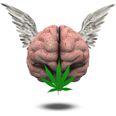 medical marijuana: Winged Brain with Marijuana Leaf Stock Photo