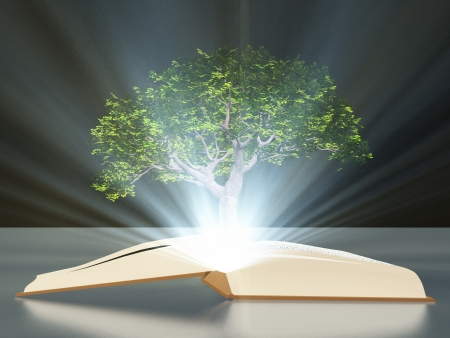 mystical forest: Book with tree