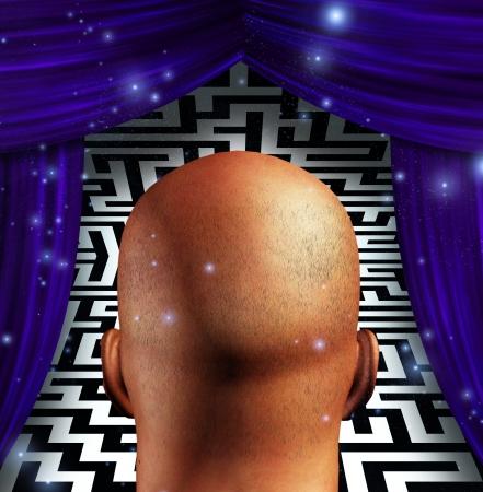 cognition: Head Maze
