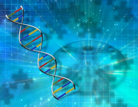 cell biology: DNA Abstract