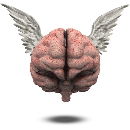Winged Brain photo