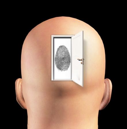 cerebra: Doorway to Ideantity