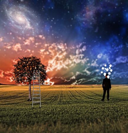 creativity: Very shallow focus symbolic landscape