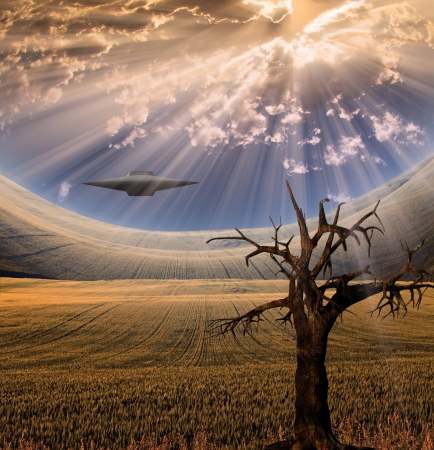 Alien craft in landscape photo
