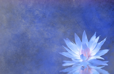spiritual: Lotus Blossom Textured Background