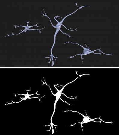 electrons: Nerve cells with alpha mask for easy extraction Stock Photo