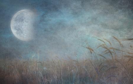 moonrise: Grunge Field