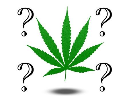 reefer: Marijuana Questions