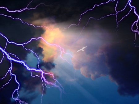 rages: Storm rages about little white bird flying toward sunlight