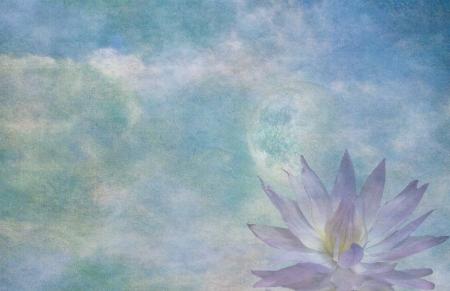 reflection: Lotus and moon Stock Photo