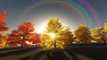 Rainbow over autumn trees photo