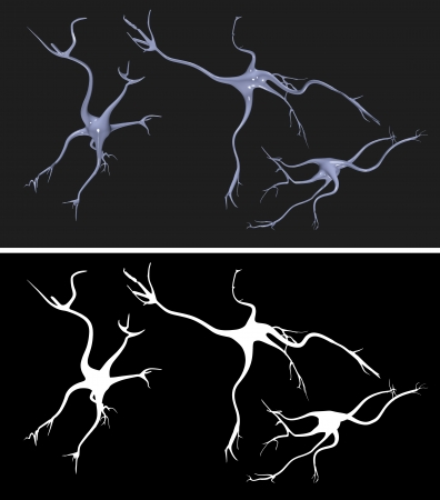 alpha cell: Nerve cells with alpha mask for easy extraction Stock Photo