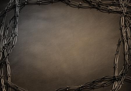 s trap: Barbed Frame Grunge