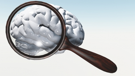 loupe: White Brain under magnifying glass
