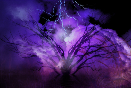 impending: Tree and Storm landscape
