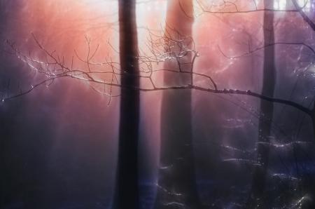 tress: Painterly Quiet Grove of Tress