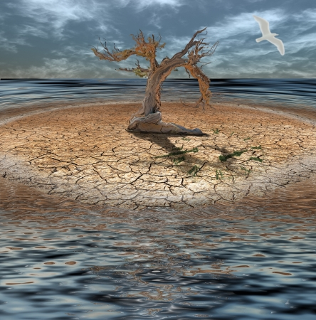 erosion: Desert Flood island with dead tree and clock made of grass
