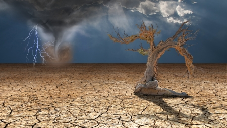 사막의 폭풍우